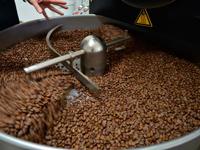 Обжарка кофе Danesi